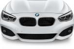 BMW 1 SERIES -  Kühlergrill