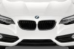BMW 2 SERIES Sport -  Kühlergrill