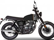 BRIXTON Saxby 250 -