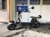 E-SCOOTER ECO Cruser 1500